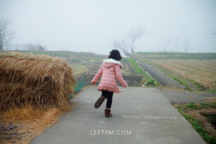 在乡村:二元结构下的年味表情