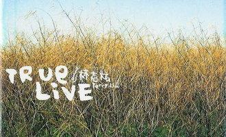 回味唱片:Ture Live(林志炫)