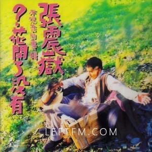 张震岳:花开好了没