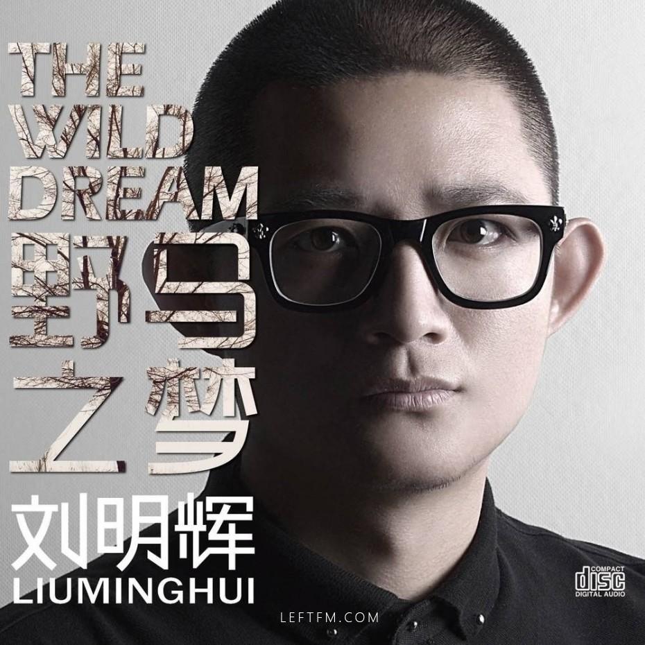 刘明辉:野马之梦
