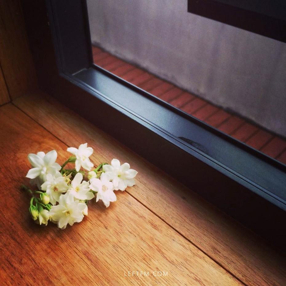 夏の门:一花一叶一深味