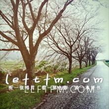 第57期:漫漫樱花祭