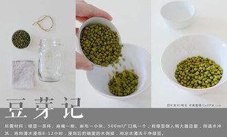 DIY手工课:豆芽记