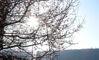 西藏:神圣的抵达