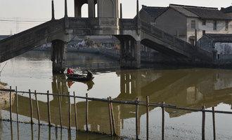 伯埙桥与它的同岁邻居