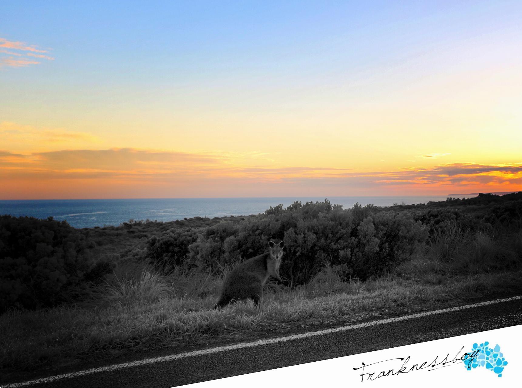 澳大利亚十二门徒岩04