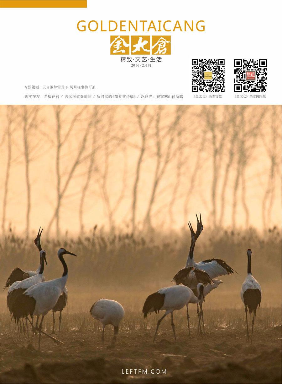 金太仓杂志2016年2月刊