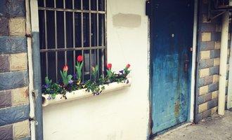 都能将日子过成诗,又怎会看不到生活的希望