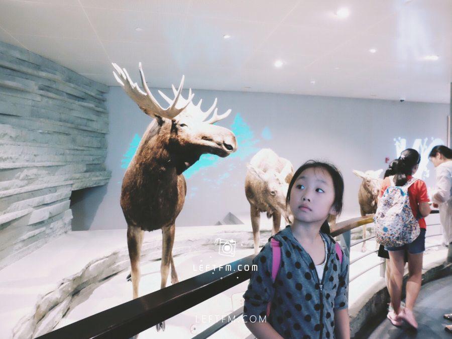 牵手去看:上海自然博物馆