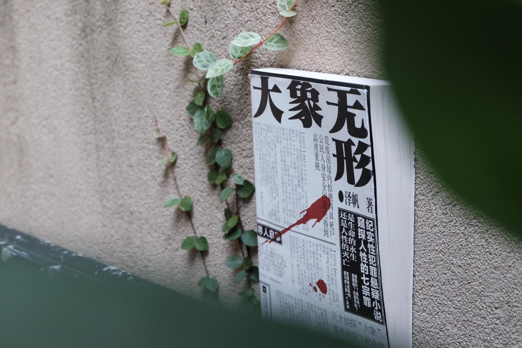 泽帆 / 大象无形