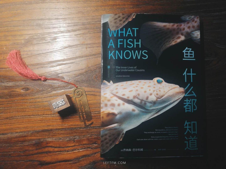 [美] 乔纳森·巴尔科姆 / 鱼什么都知道