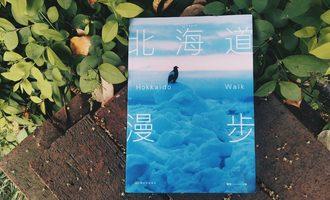 北海道漫步:一杯美式和一头棕熊