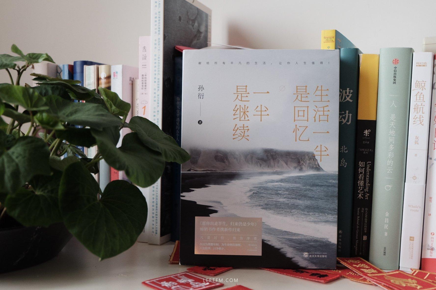 孙衍 / 生活的一半是回忆,一半是继续 / 武汉大学出版社